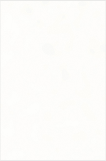Fresh White - #1141