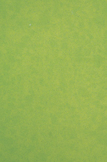 Vivid Green - #2710